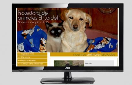adopcion-perros-y-gatos