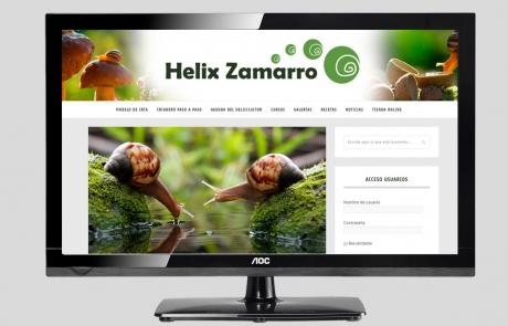 helix-zamarro-web